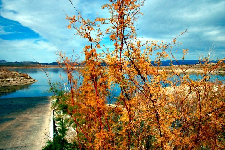 6 Scenic Lakes for Camping in the Southwest