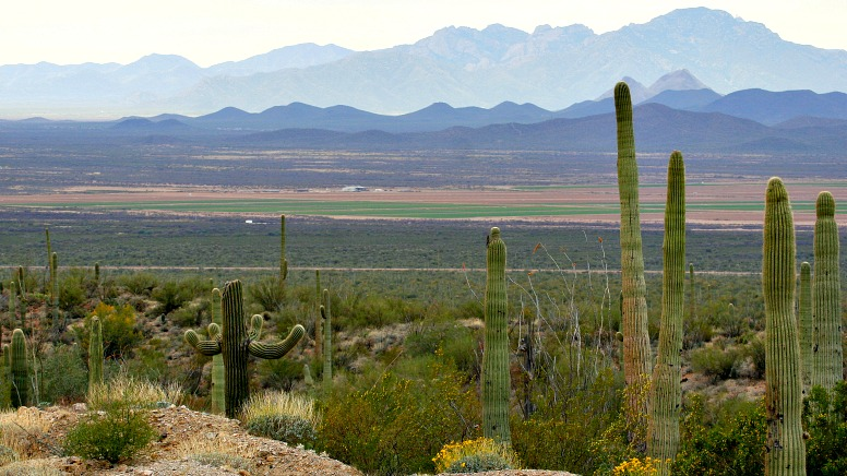 13 Weird and Wonderful Reasons to RV to Tucson