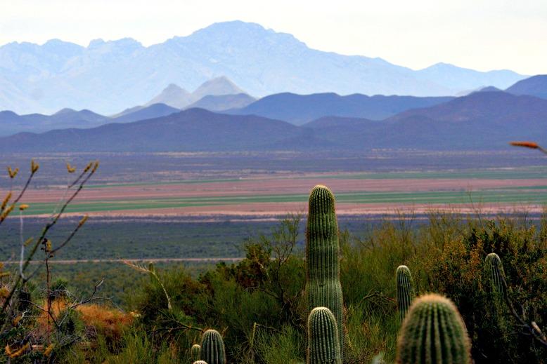 The Old Pueblo: Tucson