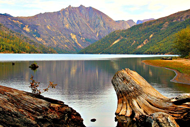 Spirit Lake Memorial Highway: Scenic Byway to Mount St. Helens