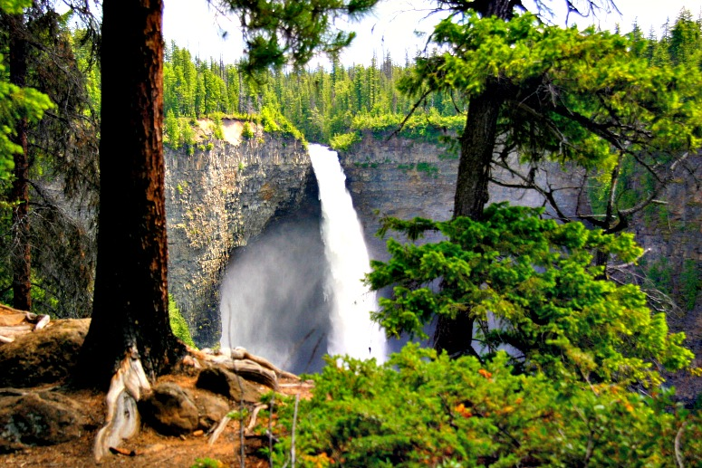 Land of 41 Breathtaking Waterfalls and Counting