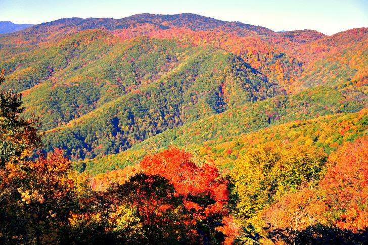 Blue Ridge Parkway: America's Favorite Drive