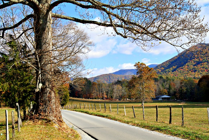 Now Is the Best Time to Visit the Smokies