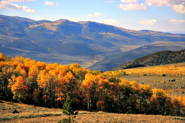 Utah's Fishlake Scenic Byway Fall Foliage Amazes