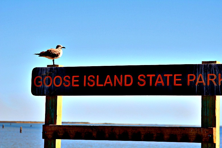 Life by the Bay: Goose Island State Park
