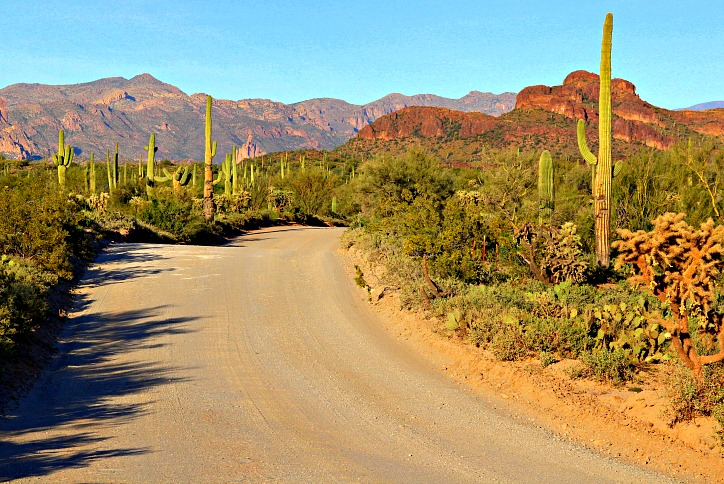 5 Surprising Facts about Arizona you didn't know (But Now You Do)