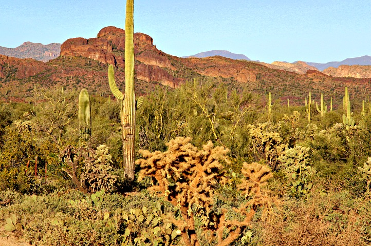 4 Stunning Natural Features That Define Arizona
