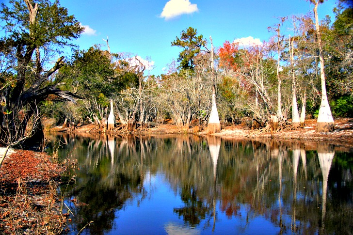 Best Georgia State Parks: Plan Now for a Spring or Summer Getaway