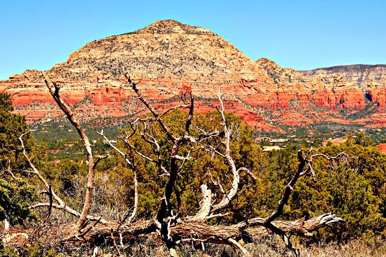Turn 230 Miles into a Grand Arizona Adventure