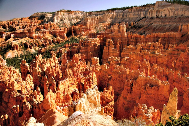 Utah Wanted All the Tourists. Then It Got Overrun.