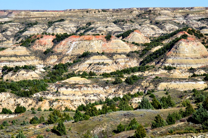 A Park to Honor a President: Theodore Roosevelt National Park