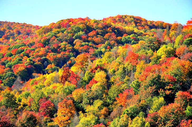 7 Fall Inspired Road Trips