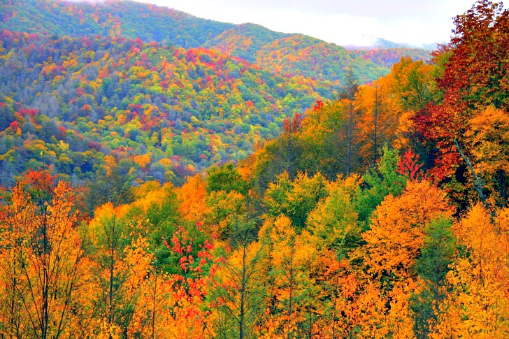 Great Smoky Mountains National Park: Land of the Blue Smoke