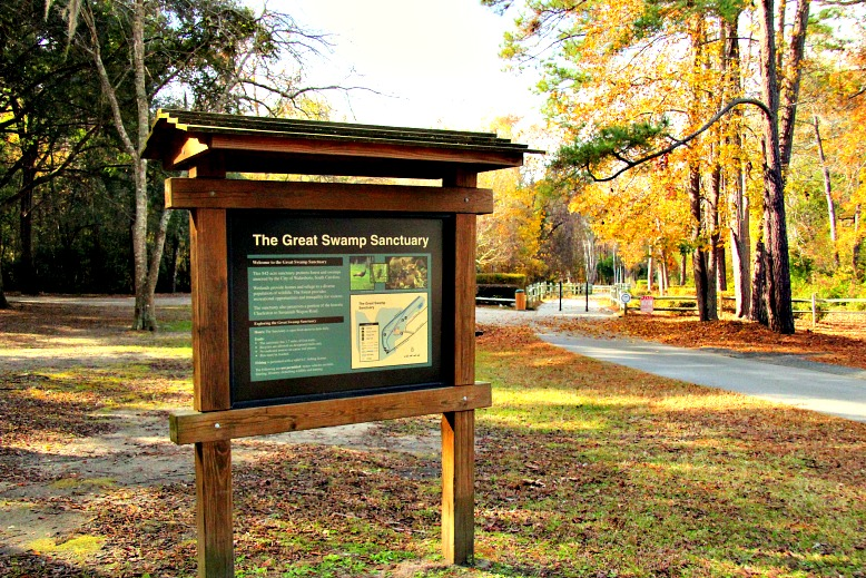 What's in a Name? Walterboro Wildlife Sanctuary or Great Swamp Sanctuary