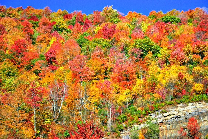 Stunning Fall Drives across America