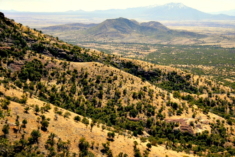 Memorial Day 2021: Best Arizona Road Trips for the Long Holiday Weekend