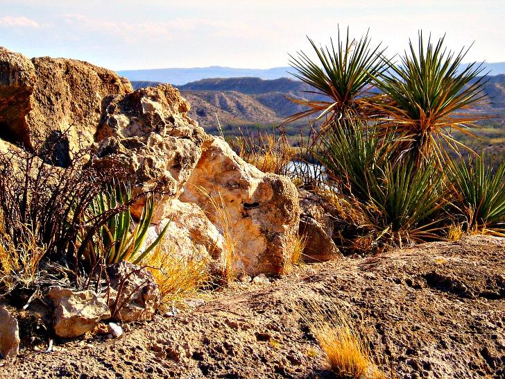 The Ultimate Big Bend National Park Road Trip