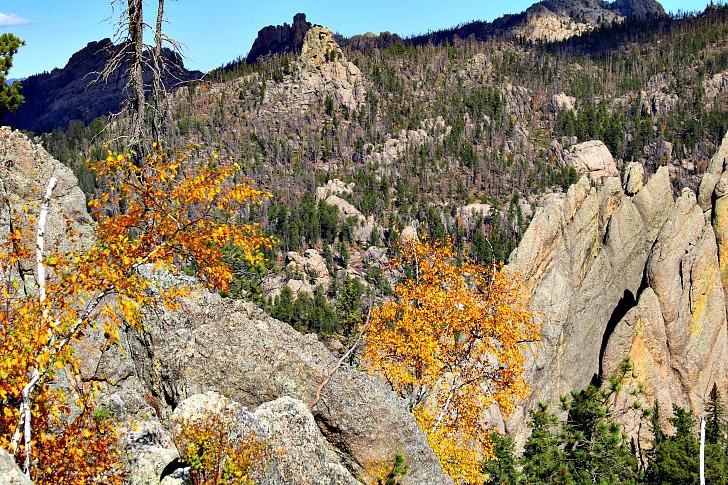 Custer State Park: A Black Hills Gem
