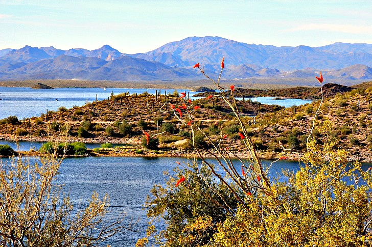 Lake Pleasant, an Oasis in the Sonoran Desert