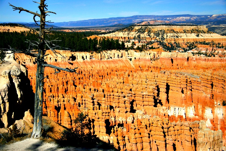 Make Bryce Canyon National Park Your Next RV Trip