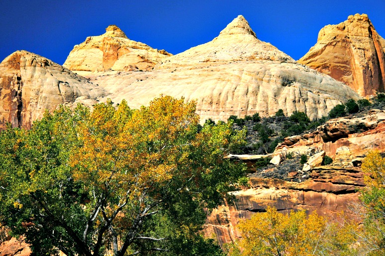 National Park Facts: The Biggest, Smallest, Oldest, Newest, Most Visited, and More…