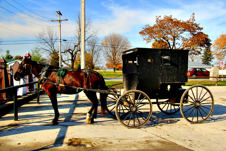 A Window into a Unique World: Amish Life along the Heritage Trail