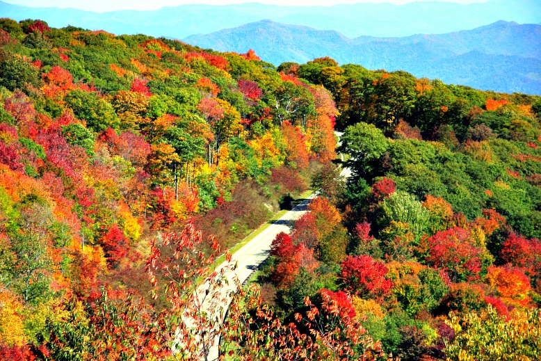 Leafy Scenes: 12 of the Best Road Trips for Viewing Fall Foliage